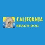 Copy of California beach dog (1)
